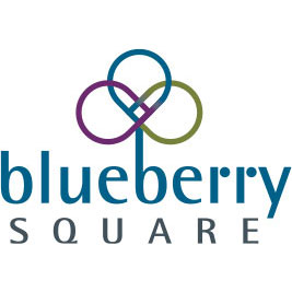 Blueberry Square Logo